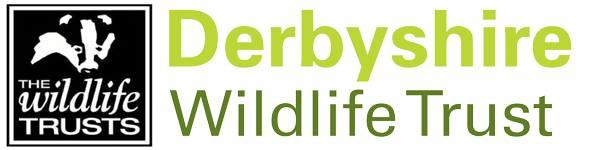 Derbyshire Wildlife Trust : Belper Shop on Inter Search